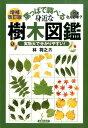 葉っぱで調べる身近な樹木図鑑増補改訂版 [ 林将之 ]