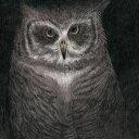フクロウの声が聞こえる (完全生産限定盤) [ 小沢健二とSEKAI NO OWARI ]
