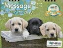 """盲導犬チャリティー卓上カレンダー""""Message""""(2020) ([カレンダー])"""