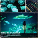 【輸入盤】Count Your Blessings [ Bring Me The Horizon ]