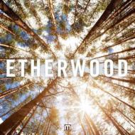 ��͢���ס�Etherwood[Etherwood]