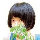 【送料無料】ボーイズ・オン・ザ・ラン