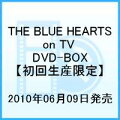 THE BLUE HEARTS on TV DVD-BOX���ڽ�����������