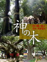 神の木 [ 李春子 ]
