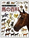 「知」のビジュアル百科(49)