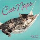 2019 Cat Naps Mini Calendar: By Sellers Publishing CAL-2019 CAT NAPS MINI CAL [ Inc Sellers Publishing ]