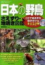 日本の野鳥さえずり・地鳴き図鑑 [ 植田睦之 ]