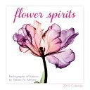 2019 Flower Spirits Radiographs of Nature by Steven N. Meyers Mini Calendar: By Sellers Publishing CAL-2019 FLOWER SPIRITS MIN..