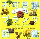 おどろきの植物不可思議プランツ図鑑 食虫植物、寄生植物、温室植物、アリ植物、多肉植物 [ 木谷美咲 ]