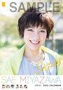 宮澤佐江 AKS2015 カレンダー SKE SKE48 発行年月:2014年12月中旬 ISBN:4971869374716 本 カレンダー・手帳・家計簿