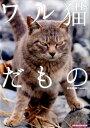 ワル猫だもの [ 南幅俊輔 ]
