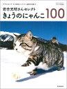 きょうのにゃんこ100 岩合光昭さんセレクト (Asahi original) [ アサヒカメラ編集部 ]