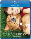 僕のワンダフル・ライフ ブルーレイ+DVDセット【Blu-ray】 [ ジョシュ・ギャッド ]