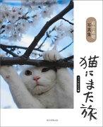 猫にまた旅 フィルムカメラ編