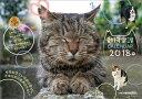 掛曆, 海報, 簡介 - 【壁掛】日本動物愛護協会(2018カレンダー)