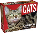 Cats 2018 Mini Day-To-Day Calendar CAL 2018-CATS MINI DAY-TO-DAY [ Andrews McMeel Publishing ]