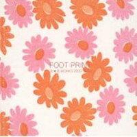 FOOT_PRINT���֡���WORKS_2000-2003