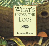 What��s_Under_the_Log��