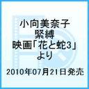小向美奈子 緊縛 -映画「花と蛇3」より-