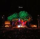 Tree (初回限定盤 CD+DVD) [ SEKAI NO OWARI ]
