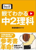 Try IT�ʥȥ饤���åȡ� �ѤƤ狼�� ��2���