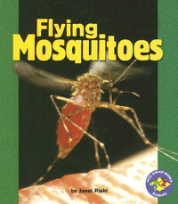 Flying_Mosquitoes