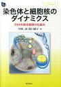 染色体と細胞核のダイナミクス DNAを操る細胞の仕組み (DOJIN BIOSCIENCE SERIES) [ 平岡泰 ]