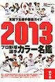 プロ野球選手カラー名鑑(2013)