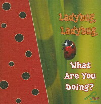 Ladybug��_Ladybug��_What_Are_You