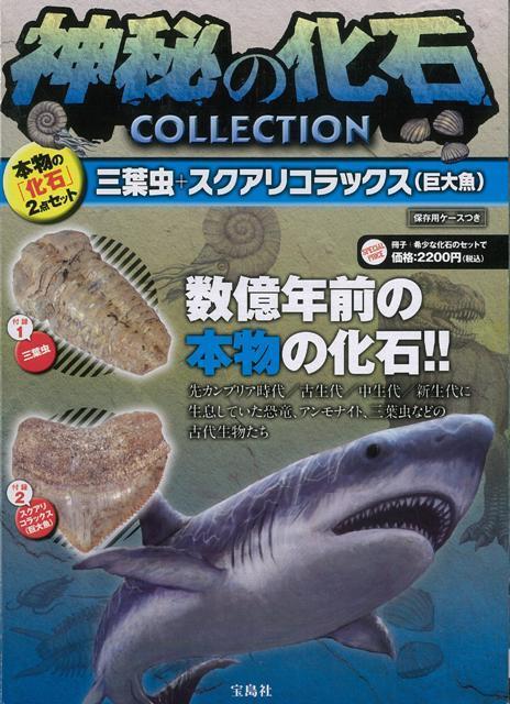 【バーゲン本】神秘の化石COLLECTION 三葉虫+スクアリコラックス [ 本物の化石2…...:book:16382652