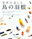 世界の美しき鳥の羽根 [ 藤井幹 ]
