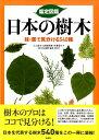 鑑定図鑑日本の樹木 枝・葉で見分ける540種 [ 三上常夫 ]