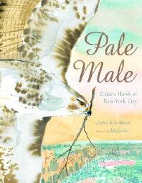 Pale_Male��_Citizen_Hawk_of_New