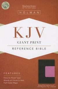 GiantPrintReferenceBible-KJV-MagneticFlap[HolmanBibleStaff]
