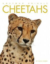 AmazingAnimals:Cheetahs