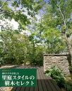 森のステキを楽しむ里庭スタイルの樹木セレクト