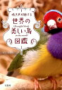 鳴き声が聴ける世界の美しい鳥図鑑 [ 上田恵介 ]...