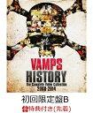 【先着特典】HISTORY-The Complete Video Collection 2008-2014(初回限定盤B)(A2サイズポスター付き) [ VAM...