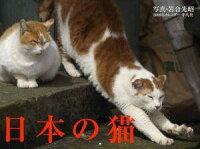楽天ブックス通販 日本の猫カレンダー 2009