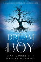 Dream Boy [ Madelyn Rosenberg ]