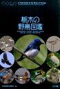 栃木の野鳥図鑑 住宅地周辺の鳥/平地の鳥/里山の鳥/山地の鳥/高山 [ 日本野鳥の会 ]