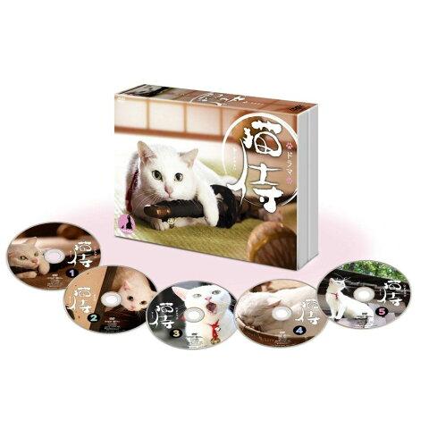 ドラマ「猫侍」DVD-BOX [ 北村一輝 ]