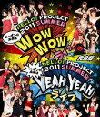 Hello!Project 2011 SUMMER ~ニッポンの未来は WOW WOW YEAH YEAH ライブ~完全版【Blu-ray】 [ Hello! Project ]