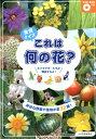 食育クイズこれは何の花? 身近な野菜や果物が全32種![DVD-ROMつき] [ 少年写真新聞社『給