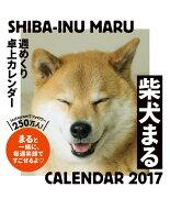 2017年 柴犬まる週めくり卓上カレンダー