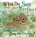 Why Do Sea Turtles Look Like They Are Crying? [ Jennifer Shand ]