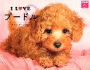 I LOVE プードル カレンダー2020