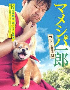 【楽天ブックスならいつでも送料無料】マメシバ一郎 フーテンの芝二郎 DVD-BOX [ 佐藤二朗 ]