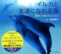 イルカと友達になれる海