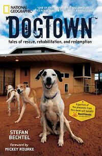 Dogtown��_Tales_of_Rescue��_Reha